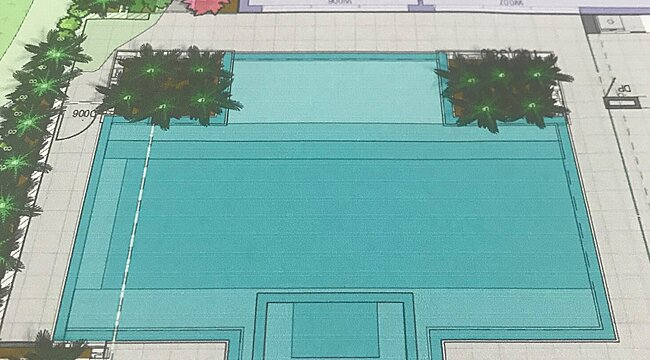 Landscape plan showing plants around boundary and pool area